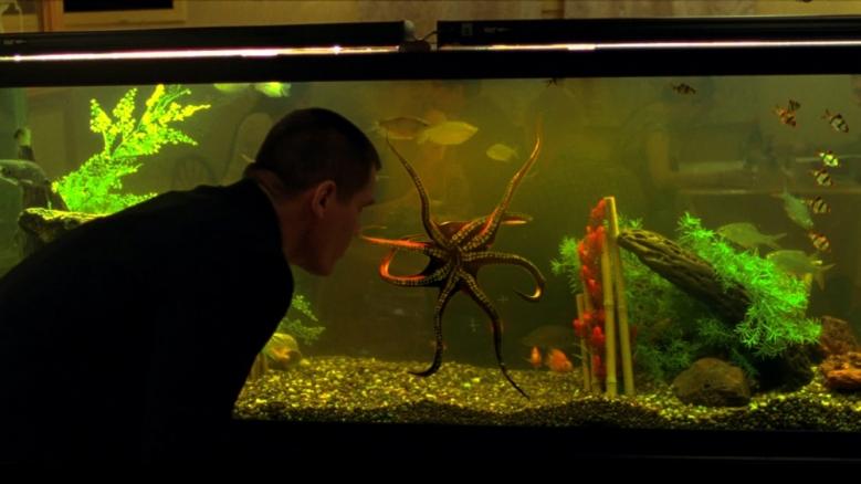 octopushomage