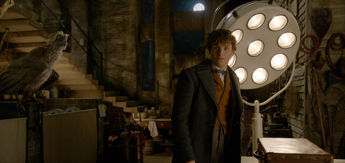 Relationships, Secrets, Politics, and Nostalgia: A 'Fantastic Beasts' Conversation